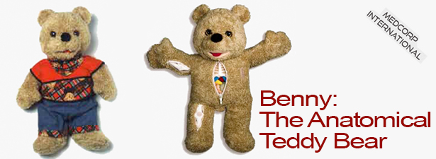benny_the_anatomical_teddy_bear_by_medcorp_int